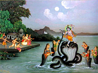 Defeat of Kaliya Naga by lord Krishna is also celebrated as Nag Panchami
